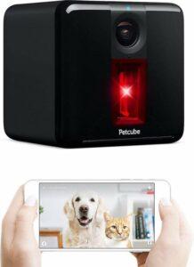 Petcube Play huisdier - hondenCamera